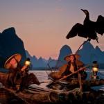 Two fishermen on bamboo rafts with a bird spreading it's wings.  Li River, Xingping, Guilin, Guangxi, China.